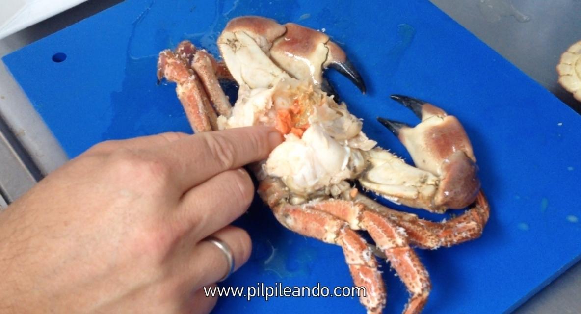 C mo abrir un buey de mar pilpileando - Como cocinar un buey de mar ...